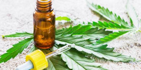 CBD Medical Marijuana