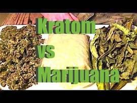 Kratom and Marijuana