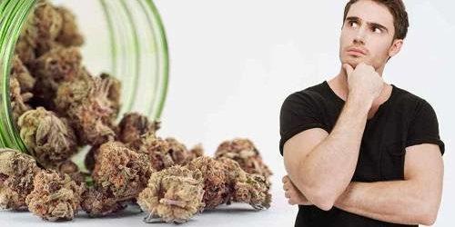Weed Grinders