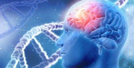 GenBrain Advanced Brain Formula