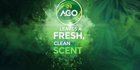 Natural Smoke Odor Neutralizer